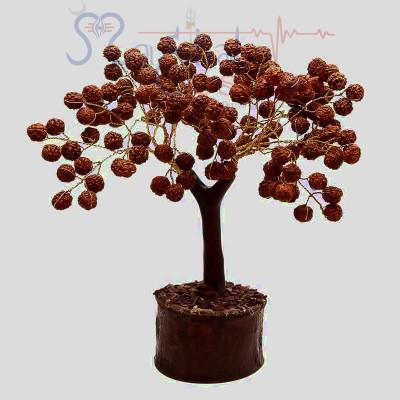 5 Mukhi Rudraksha Healing Tree